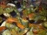 Méli mélo de légumes grillés au four
