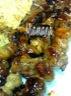 Brochettes de filet de canard aux champignons