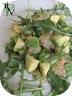 Salade roquette, pamplemousse & avocat