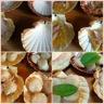 Coquilles st jacques aux echalotes et risotto de corail
