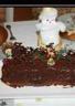 Bûche de Noël à la crème pâtissère framboises et myrtilles décors en chocolat