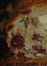 Cake pomme noix de pécan cranberries parfumé à l'érable