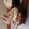 Cupcake Chocolat/Courgette aux chantilly Noix de Coco/ Chocolat