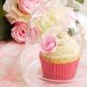 Cupcakes à la vanille économiques