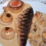 Filets de grondins aux céleris surprise