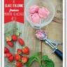 Glace italienne à la fraise et menthe glaciale