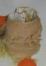 Hareng mariné