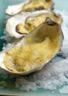 Huîtres Sabayon
