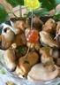 Moules au vinaigre de framboises