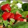 Salade d'herbes et de fraises aux parfums d'été