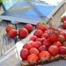 Tartine fraises et beurre de cacahuète