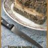 Terrine de lentilles aux pommes et au foie gras