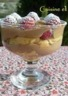 Tiramisu au champagne  chocolat et framboises