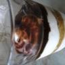 Tiramisu chocolat et speculoos