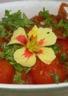 Tomates cerises rôties aux fines herbes