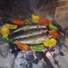 Truite citron vert / amande et poivrons au thym et huile d'olive