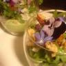 Verrine en bavarois petits pois et estragon sablé au parmesan et olives noires salade folle en ...