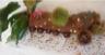 Bûche de crêpes pour Noël mousse de châtaignes et ganache au chocolat