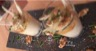 Verrines aux huîtres chou-fleur et noix